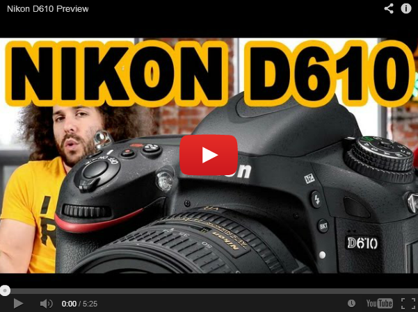 nikon d610 preview screenshot
