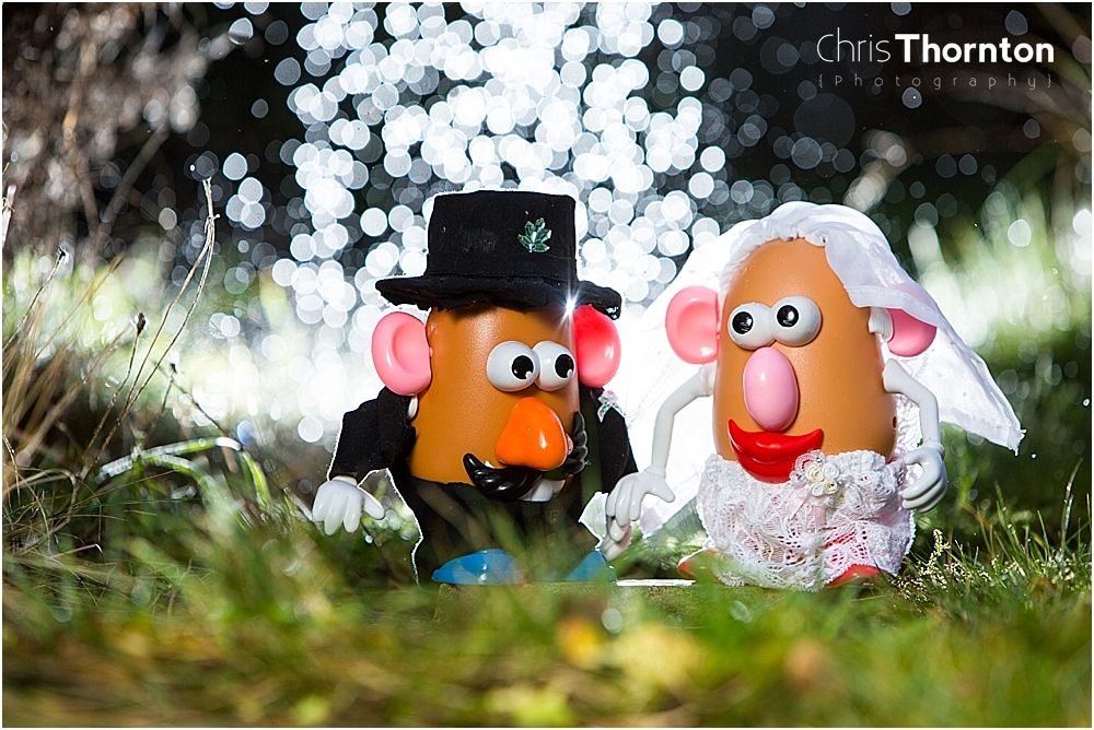 mr and mrs potatohead