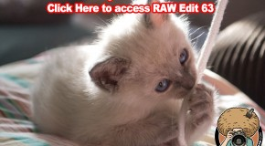 Edit this RAW File Week 63