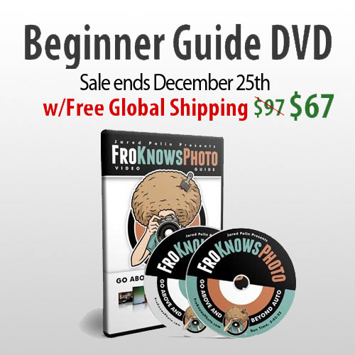 dvd sale Beginner Guide DVD Sale Ends Dec 25th